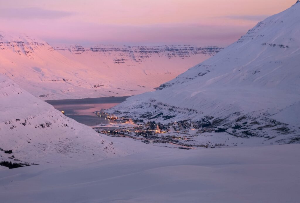 seydisfjordur town to spot some wild reindeer in iceland