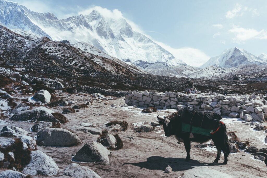 Everest Three High Passes Trek, Three Passes Guide, Kongma La Pass