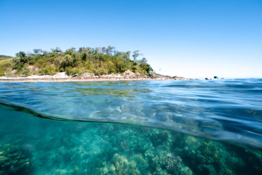 Best things to do on Orpheus Island